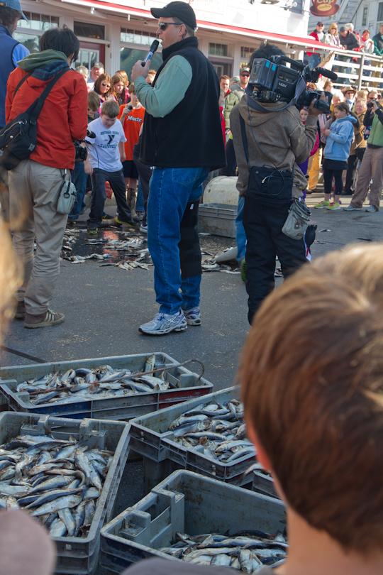 Fishermans Festival 2013 - 2-6
